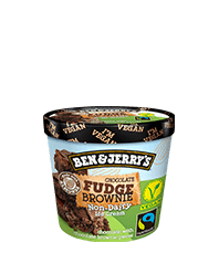 Chocolate Fudge Brownie Non-Dairy Non-Dairy Frozen Dessert